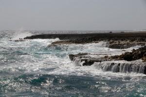 Bonaire 3